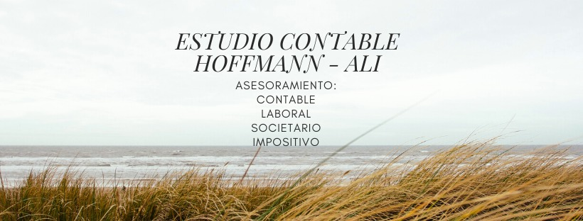 Estudio Contable Hoffmann – Alí