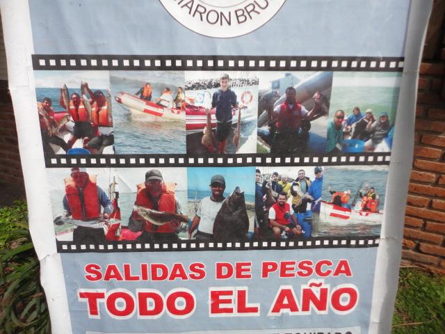 Camarón Brujo Pesca Embarcado