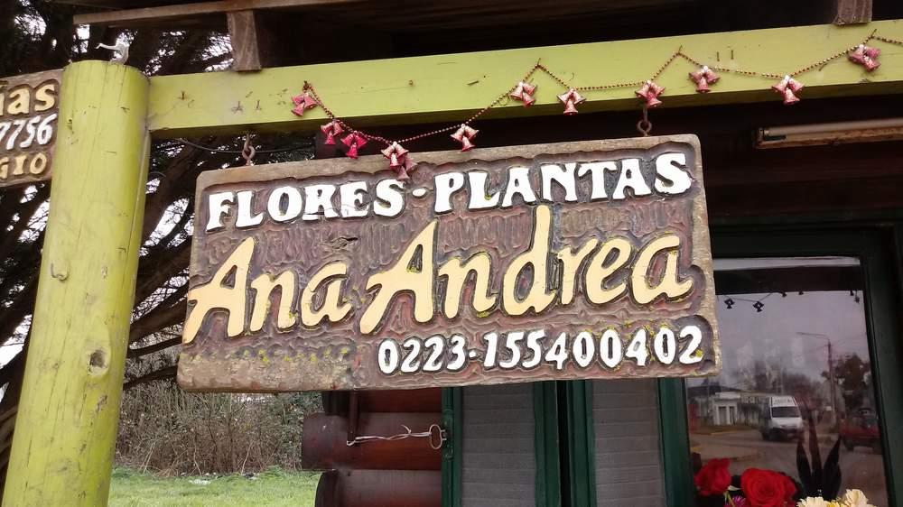 Ana Andrea Florería
