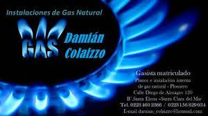 Damian Colaizzo Gasista Matriculado