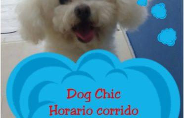 Dog Chic