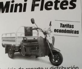 Mini Fletes Guillermo