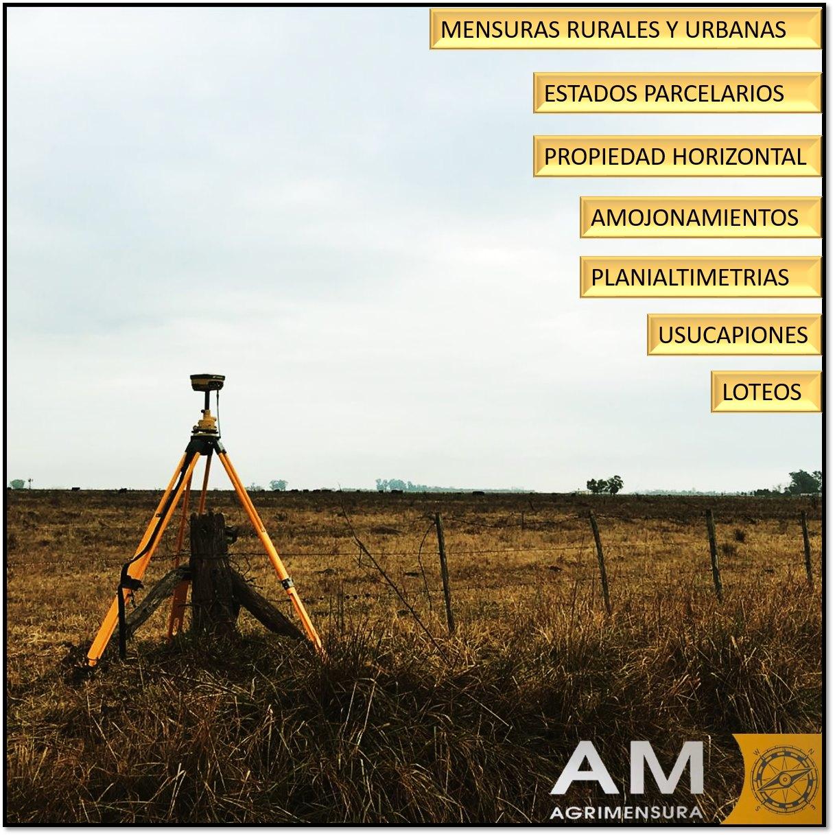 AM Agrimensura