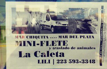 Mini Flete La Caleta