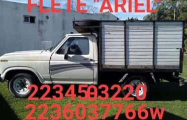 Fletes Ariel