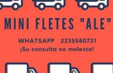 Mini Fletes Ale